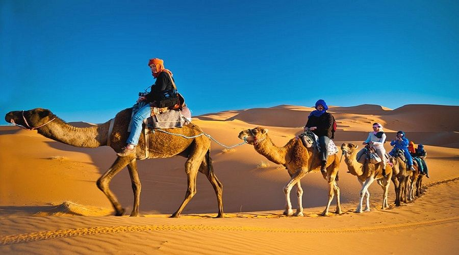 desert safari tripadvisor, getyourguide safari